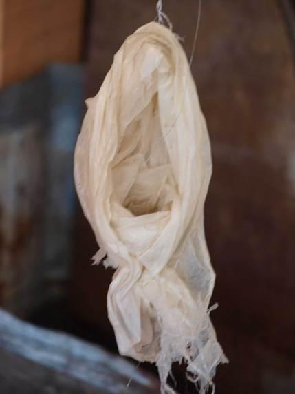 plastic-nest
