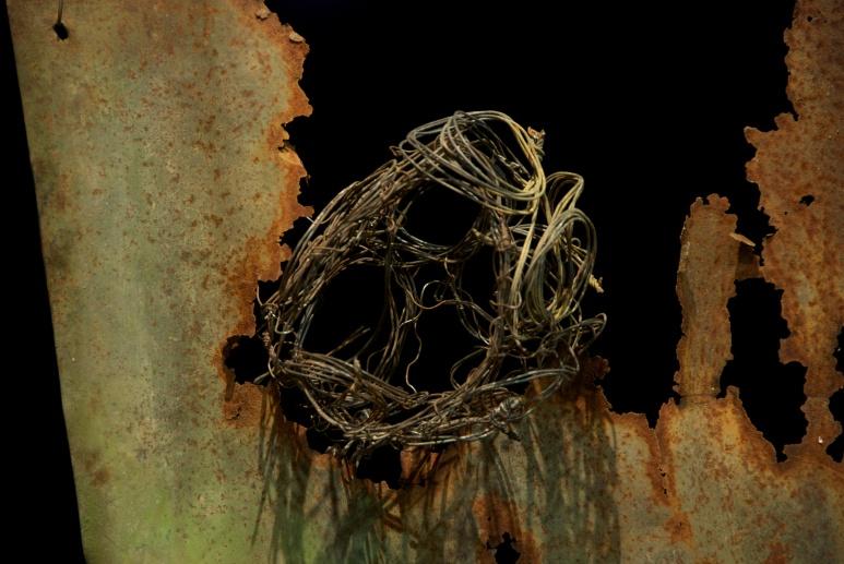 wire nest