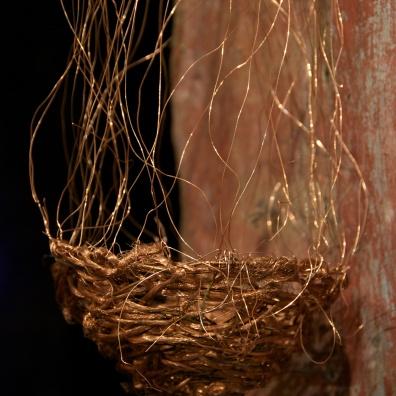 Nests