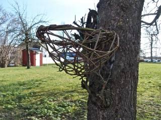 nest-begins-w