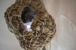 close-up-rope-nest-