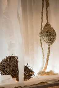 nests-3