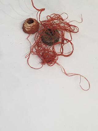 detail-nest-1